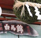 日本酒 白馬錦